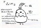 kometama024.jpg